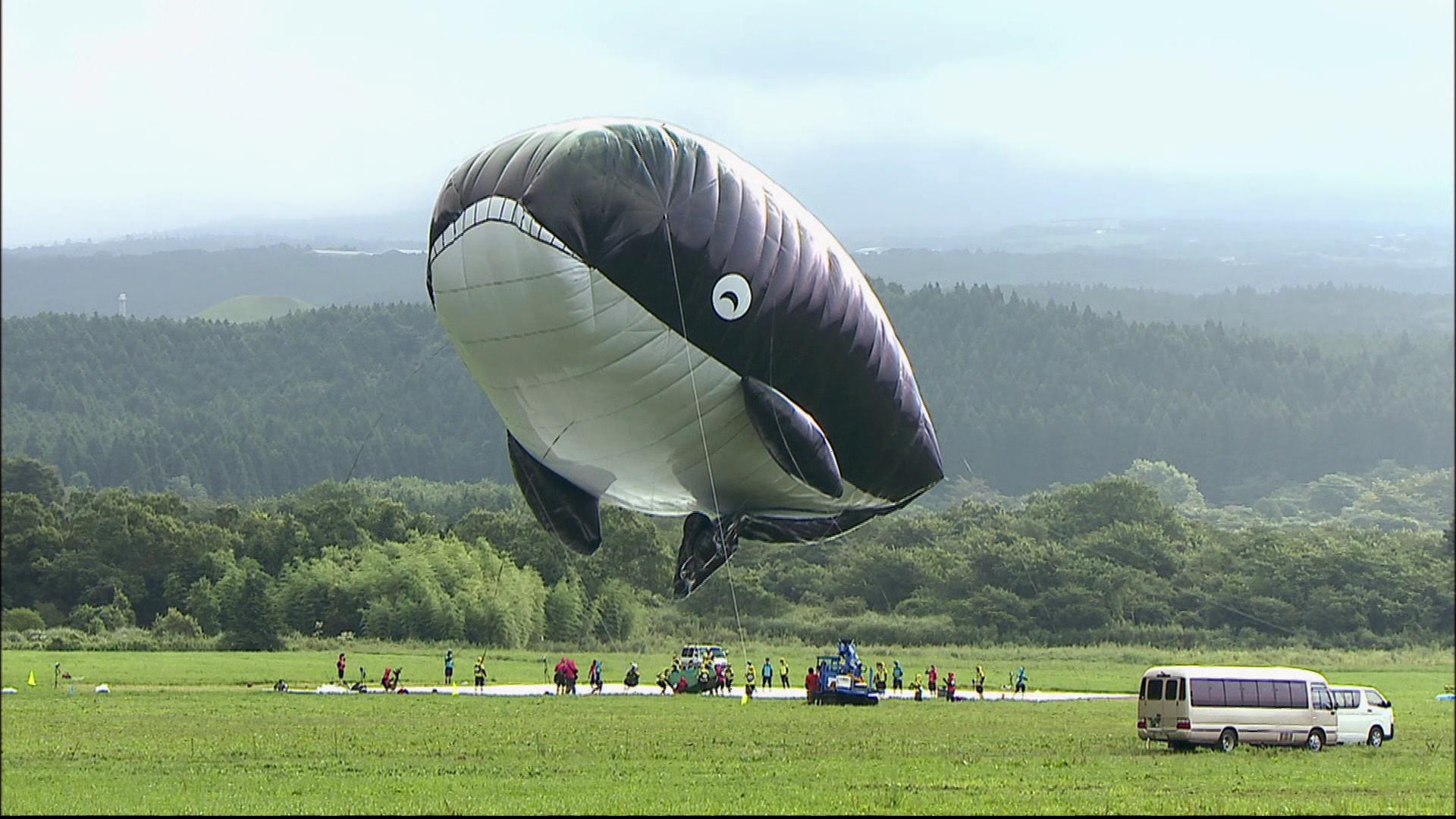 Der schwebende Wal – Filme online – Planet Schule ...  Der schwebende ...