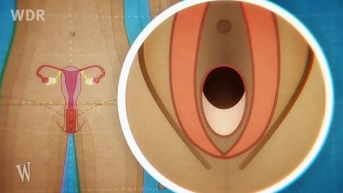 folge 03 trauen und treue filme online planet schule schulfernsehen multimedial des swr. Black Bedroom Furniture Sets. Home Design Ideas