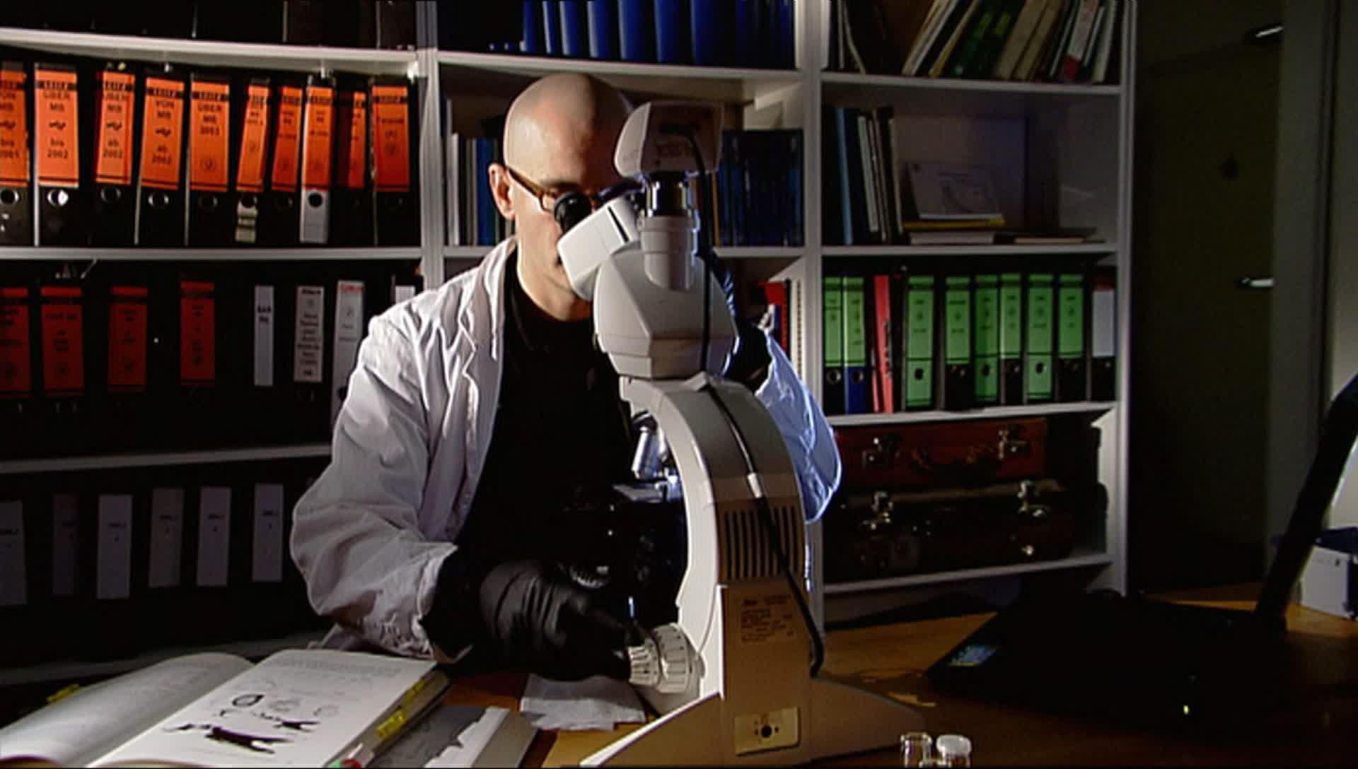 Frage trifft antwort :: video: wie vergrößert ein mikroskop?