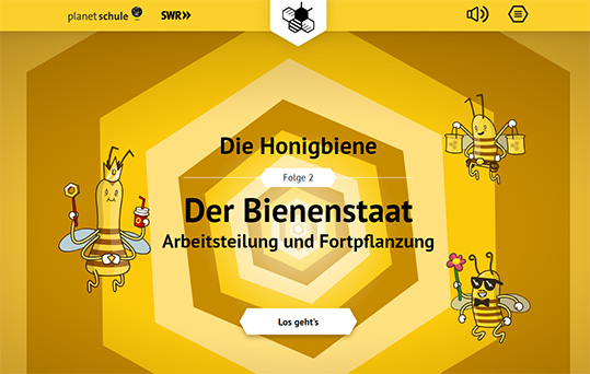 Arbeitsblatt Bienen Grundschule : Planet schule multimedia interaktive animationen