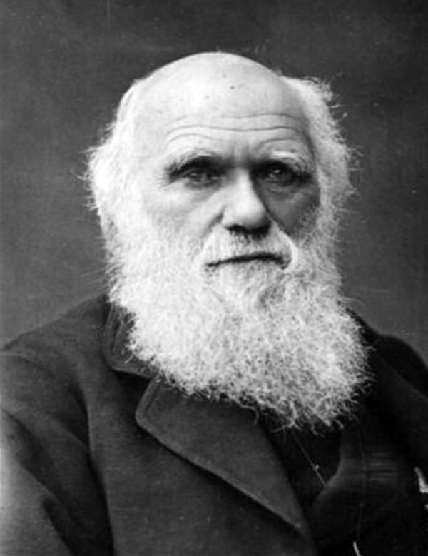 Charles Darwin Biografie Lebenslauf 9